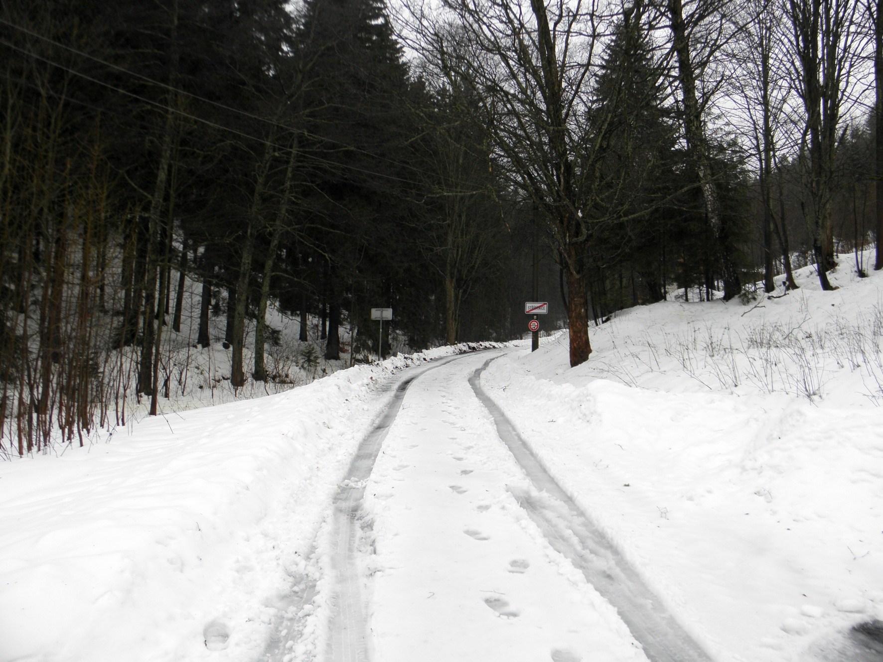 Zasněžená cesta
