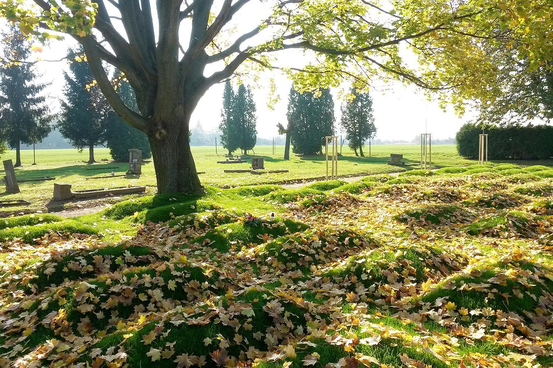Opravené válečné pohřebiště v Chrudimi