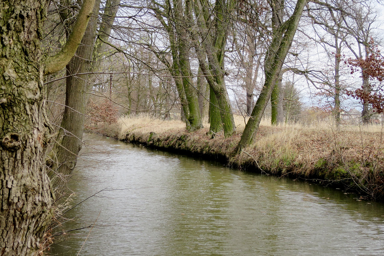Opatovický kanál u bohdanečských sádek