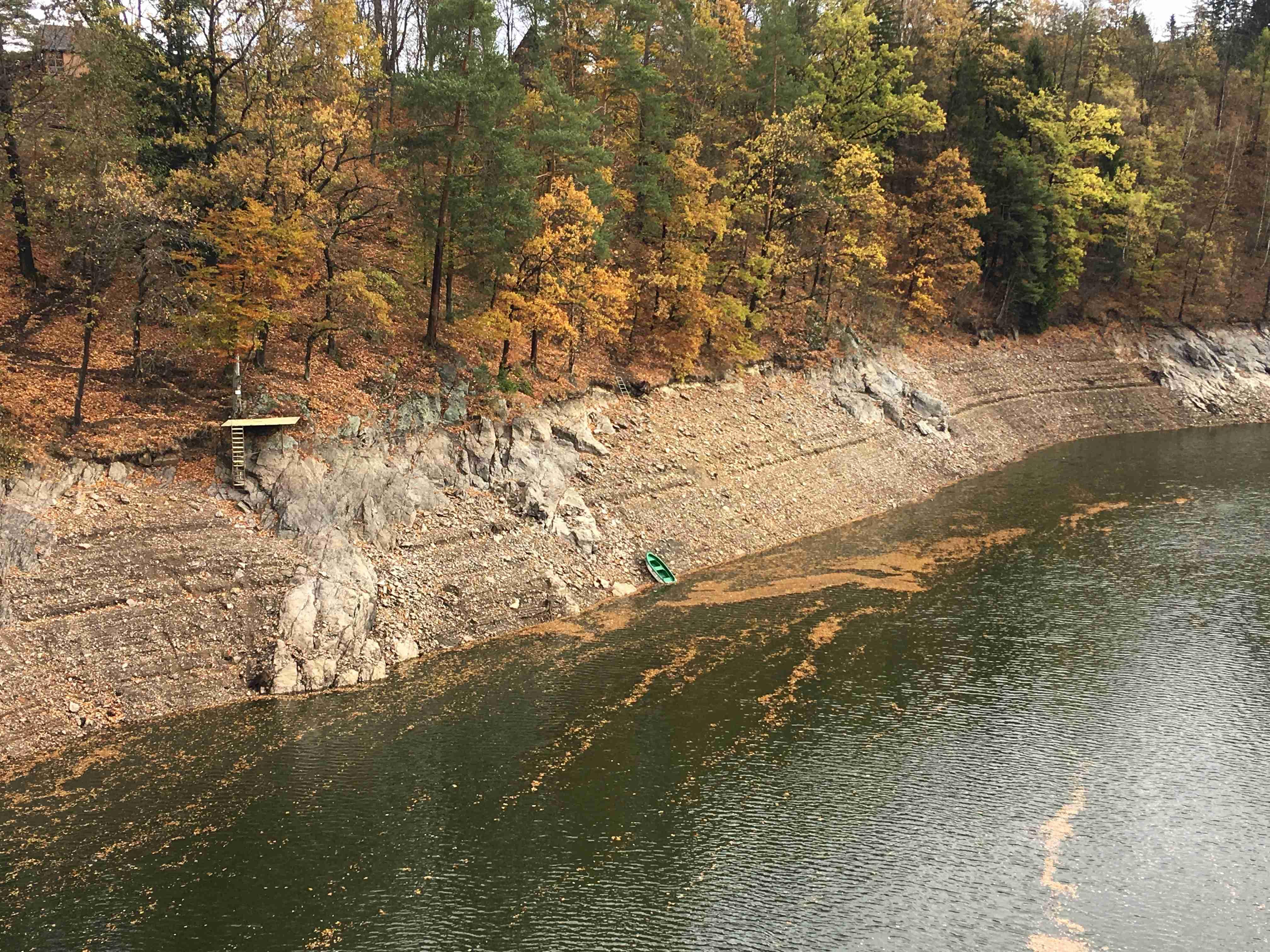 Vody je na Pastvinách málo, protože se nadlepšoval tok Divoké Orlice.