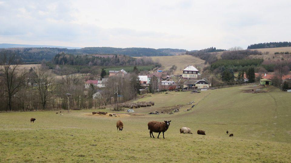 Pohled na Želivsko, dominantou je bývalá česká škola, dnes sídlo obecního úřadu