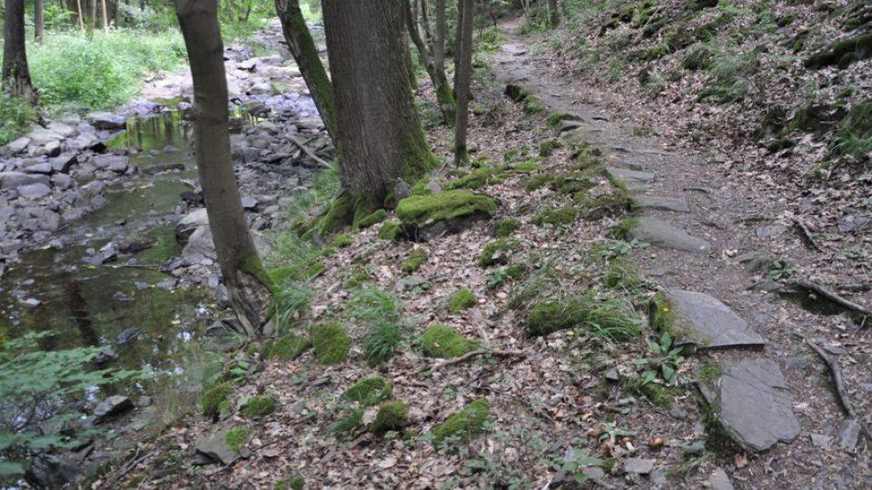 Stezka kolem Krounky se mění z lesní cesty přes úzký chodník až na ferratu