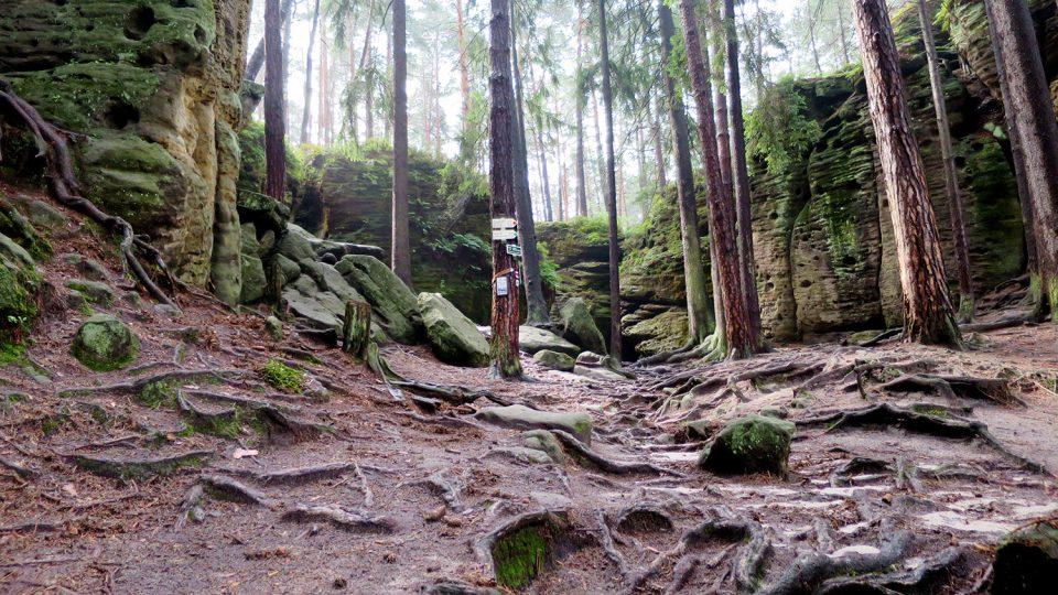 Pohled na skalní masiv Toulovcovy maštale