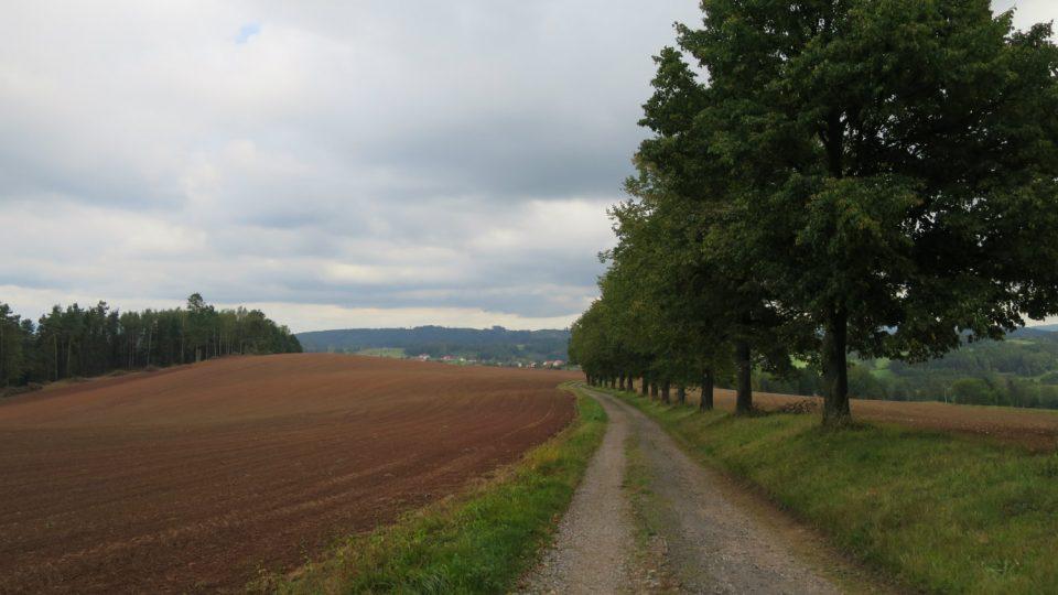 Cesta z Dolní Dobrouče k Horákově kapli