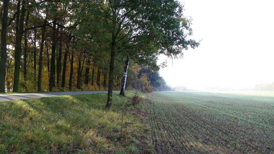 Silnice poblíž Stéblové vede i dnes po koruně někdejší hráze Velké Čeperky