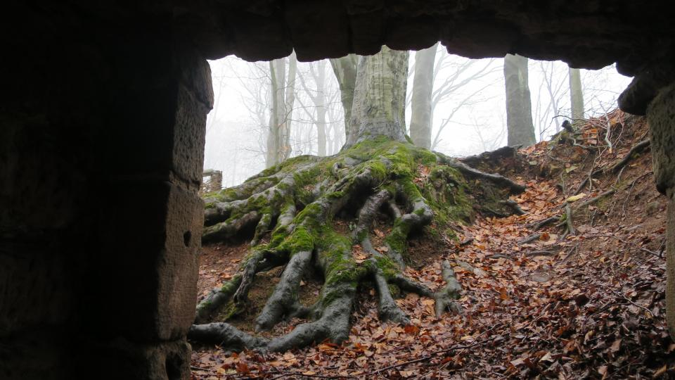 Pozůstatky středověkého hradu, kde v 16. století působila penězokazecká dílna