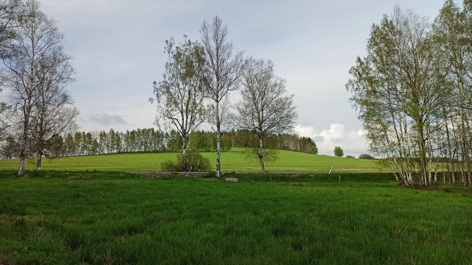 Pohled na Volákův kopec od Slavíčkovy chalupy
