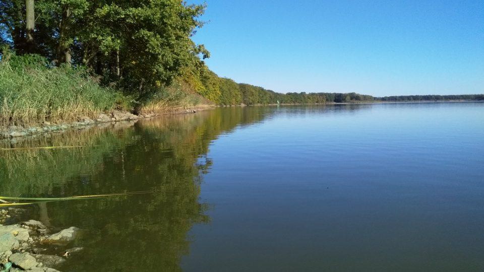 Těsně před vypuštěním a před letošním výlovem - hráz rybníka Velký Tisý a Národní přírodní rezervace Velký a Malý Tisý