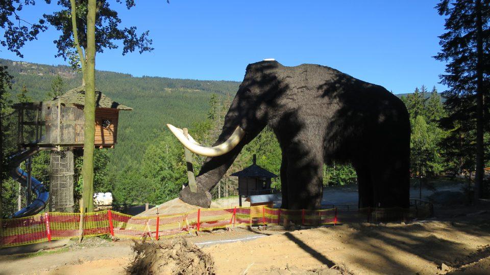 Mamut je přes 13 metrů vysoký