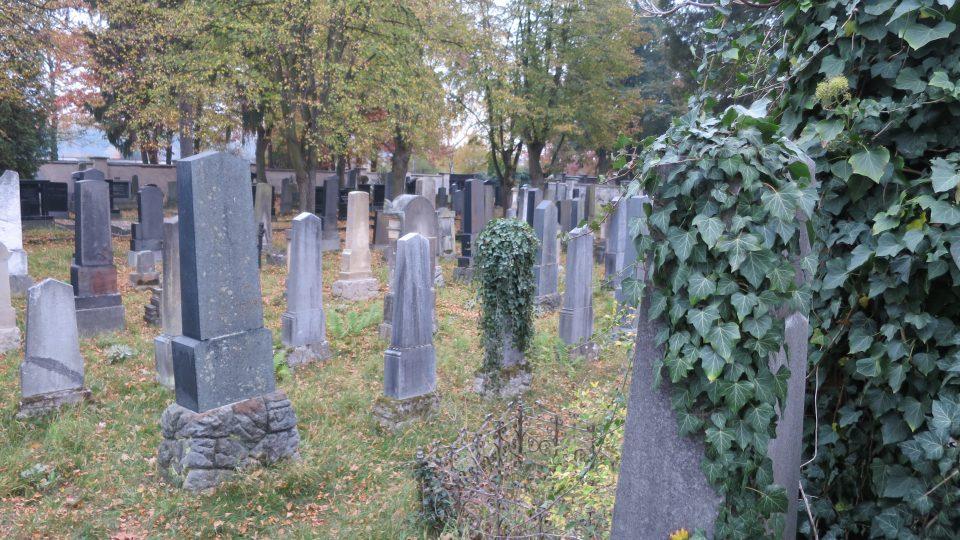 Do projektu Pardubický Slavín je zahrnutý i židovský hřbitov