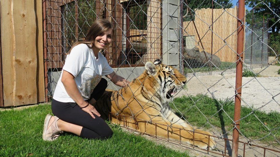 Chovatelka Petra Kreizlová a roční samička tygra bengálského