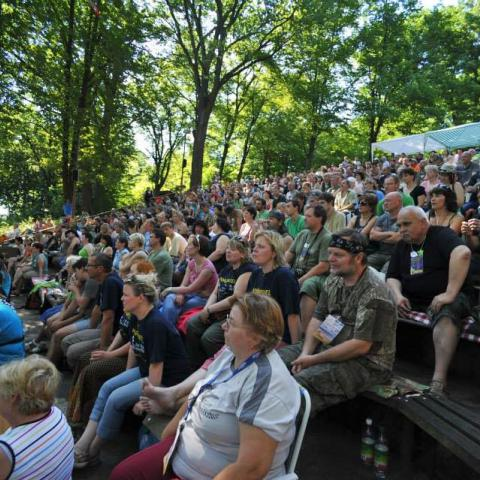 Festival člověčí muziky. To je Folkové Chvojení