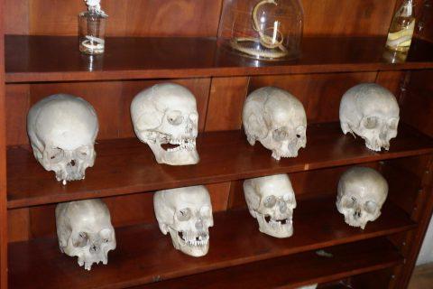 Osm lebek ze sbírky buchlovského hradu čeká antropologický průzkum
