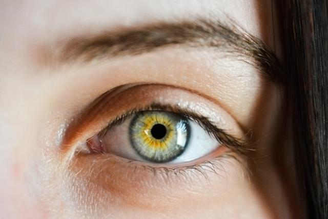 Oko, zrak, pohled