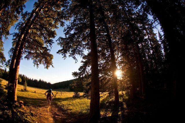 Biker projíždí po singletracku při západu slunce