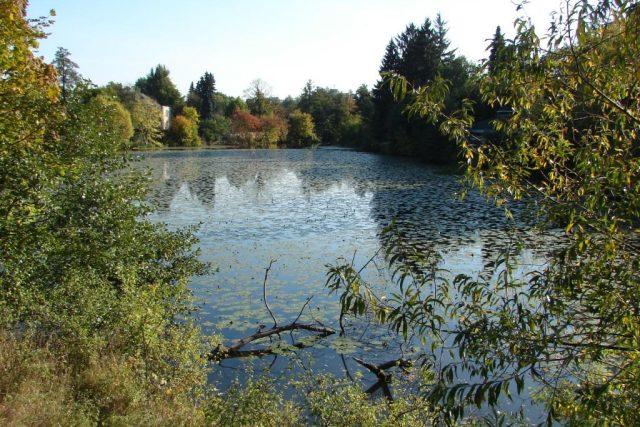 Bubeníkovy sady a Matiční jezero v Pardubicích v dnešní době