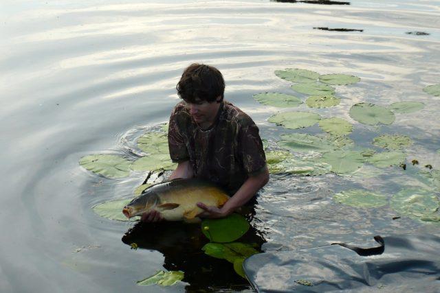 Na Labi (v ČR ulovíme ročně asi 2,5 tisíce tun kaprů (z celkových 3 tisíc tun ryb)