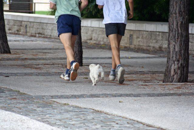 Běhání. Ilustrační foto
