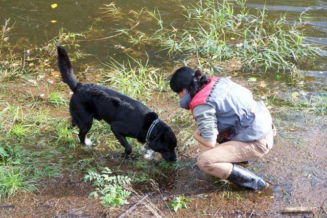 Trénink vyhledávání ve vodě