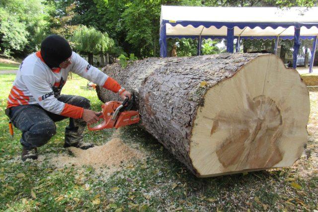Radek Smejkal z Pardubic začíná pracovat na své soše