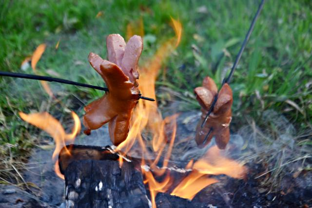 Oheň, táborák, kempování, opékání buřtů, buřty (ilustrační foto)