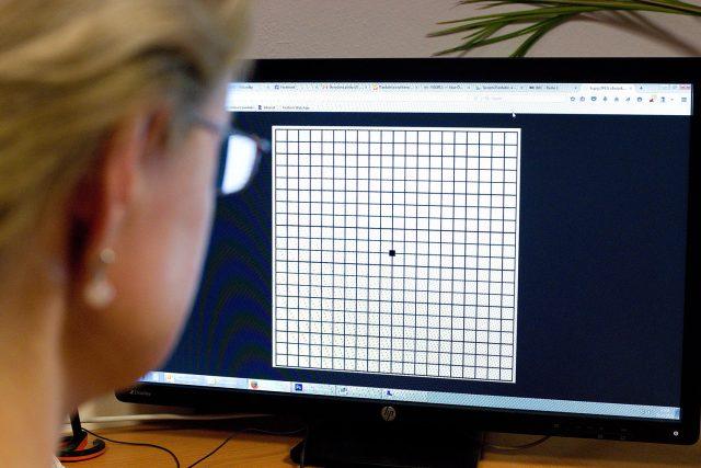 Amslerova mřížka umožňuje rychlý test i u počítače