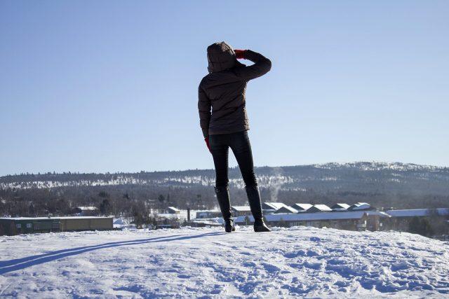 sníh, zima, mráz