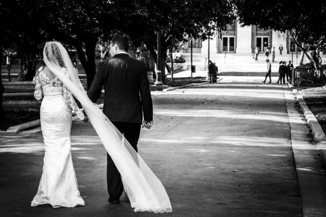 Svatba, novomanželé, nevěsta, ženich