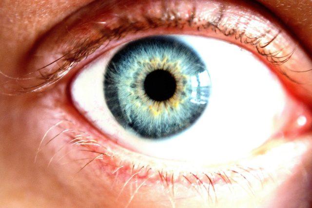 lidské oko, zelený zákal, šedý zákal