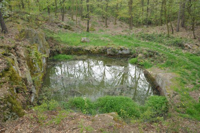 Jeden ze zatopených lomů u Raškovic se jmenuje Bezedná jáma