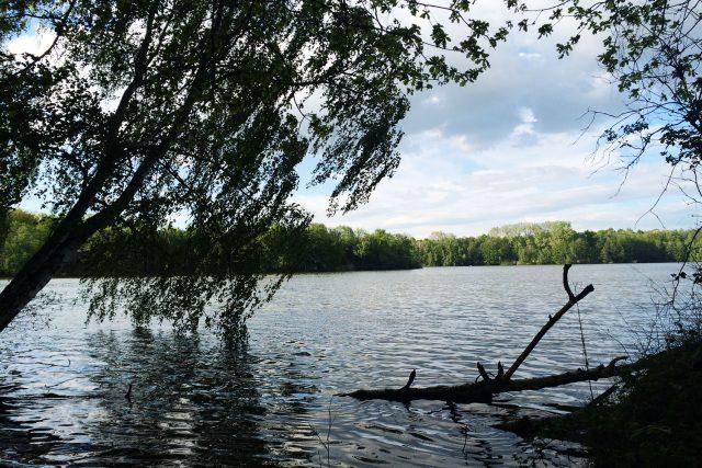 Rybníky na Bohdanečsku jsou v krásné přírodě   foto: Honza Ptáček,  Český rozhlas
