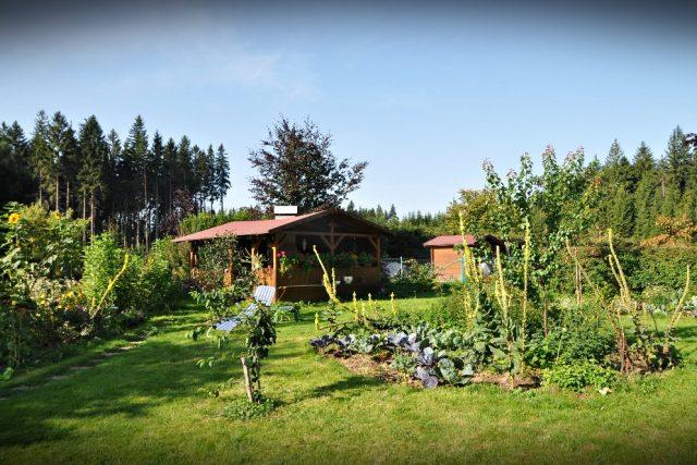Permakulturní zahrada paní Saifrové