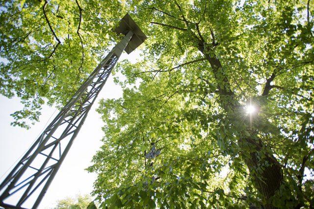 Na křídlo Messerschmittu zvoní ve Vrběticích už 70 let