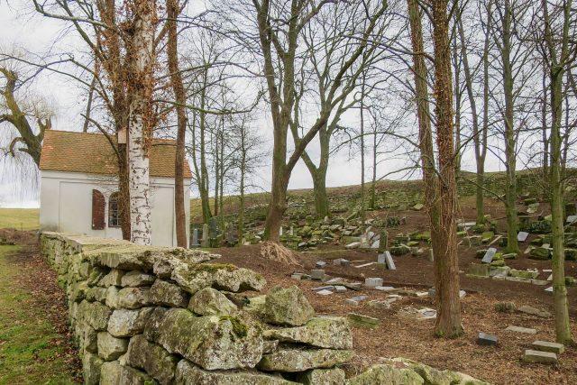 Židovský hřbitov v Litomyšli prochází proměnou