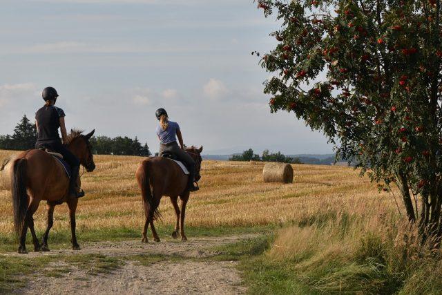 Kouzelná krajina nad Horní Čermnou láká k vycházkám i projížďkám