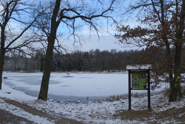 Rybník Vilém v soustavě Kochánovických rybníků