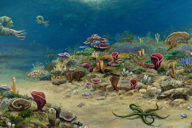 Paleorekonstrukce houbového útesu v Chrtníkách z období druhohor, autorem obrazu je Petr Modlitba