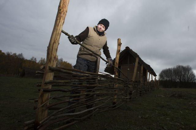 V Keltském skanzenu u Nasavrk se pořád něco děje. Na snímku Lada Hrochová ze sdružení Boii vyplétá plot kolem dvorce kováře   foto: Josef Vostárek,  ČTK