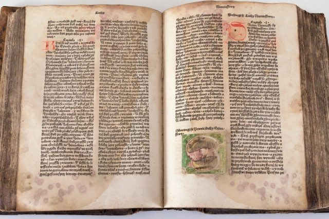 Bible pražská ve sbírkách Východočeského muzea v Pardubicích