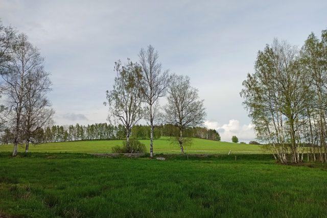 Kameničky: Pohled na Volákův kopec od Slavíčkovy chalupy   foto: Lenka Adámková