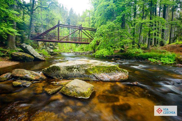 Krásná místa se dají najít v celých Orlických horách | foto: Jan Hocek,  Via Czechia