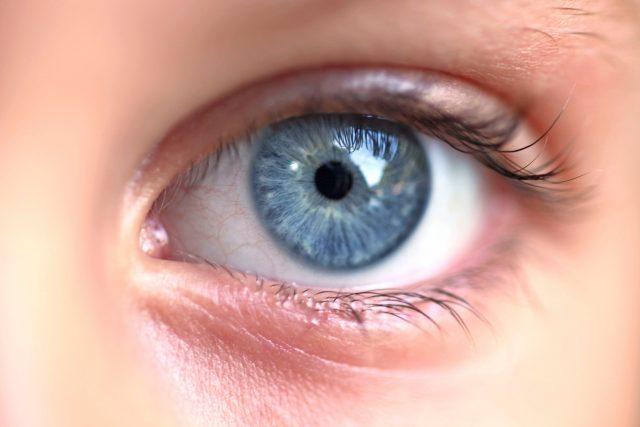 Oči jsou považovány za nejdůležitější smyslový orgán