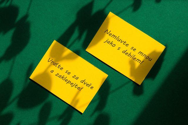 Nebudeš se mnou jednat s úctou? Dostaneš žlutou kartu. A pak možná červenou! | foto: Honza Ptáček,  Profimedia
