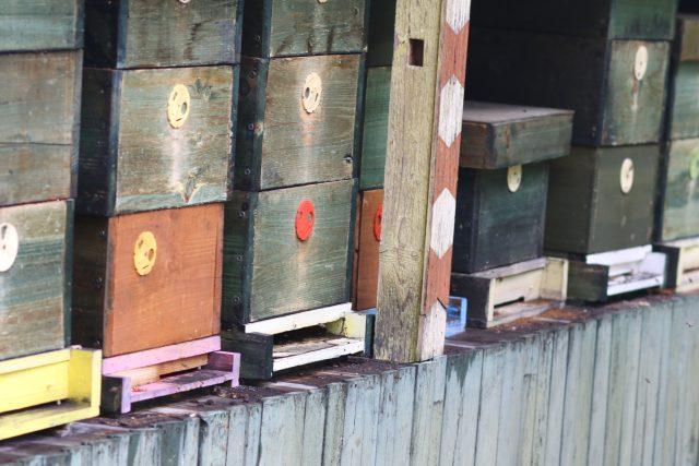 Včelín, ilustrační foto