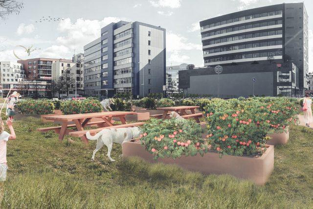 V centru Pardubic má vzniknout komunitní zahrada | foto: Jiří Beran