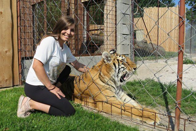 Chovatelka Petra Kreizlová a roční samička tygra bengálského | foto: Tereza Brázdová,  Český rozhlas