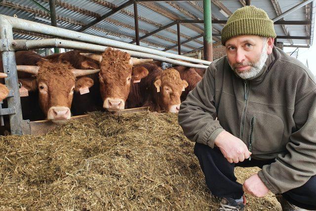 Farmář Martin Novotný chová masné plemeno Limousine | foto: Šárka Kuchtová,  Český rozhlas