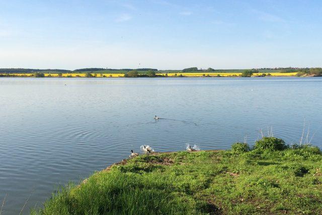 Sopřečský rybník na Přeloučsku
