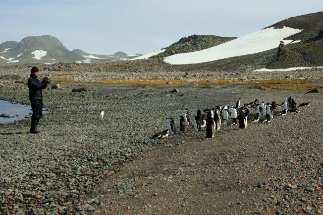 Václav Pavel hraje tučňákům na trubku