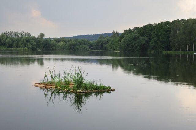 Uměle vytvořený plovoucí ostrůvek na Rosničce pomáhá čistit vodu